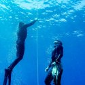 freediving how to