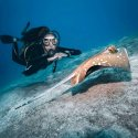 5.Diving with stingrays