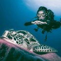 6.Cool Dive shots with a turtle