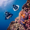 5. Diving impression in the Gili Islands