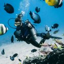 4. Diving in the Gili Islands