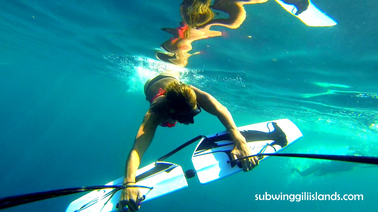 Subwing in the Gili Air