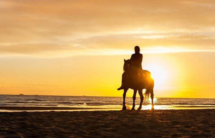 horseback riding Gilis